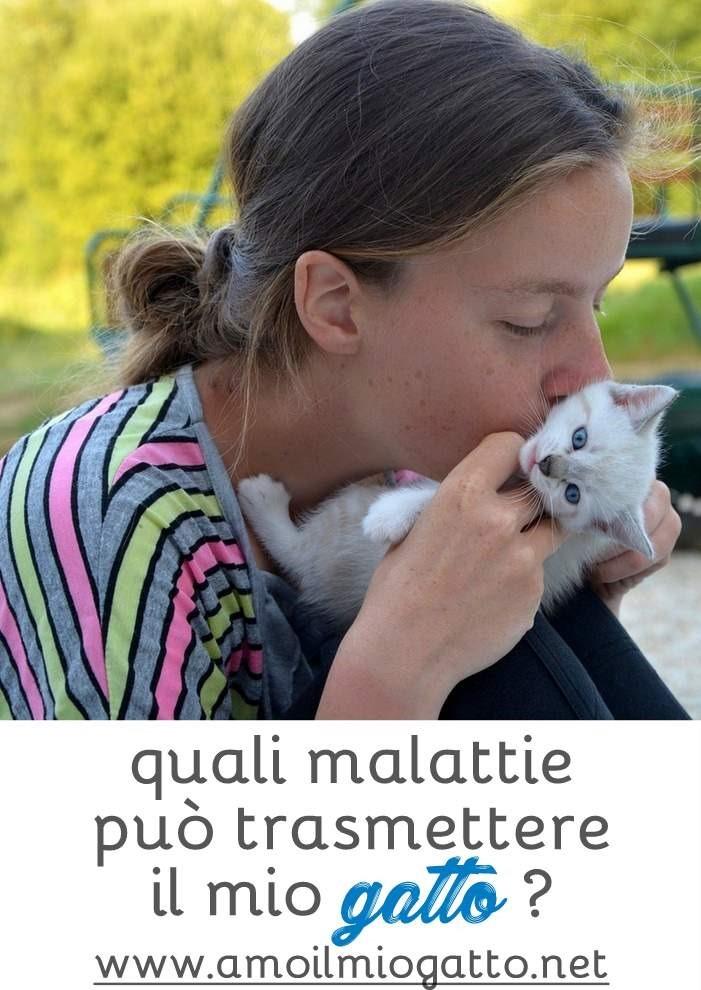 quali malattie trasmette il gatto a noi umani